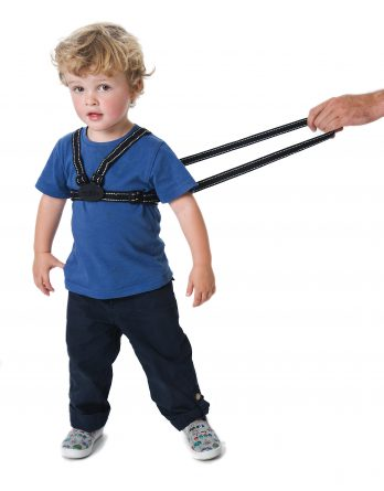 Red Kite Harness and Reins